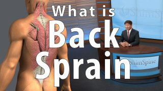 Why we have Back Sprains / Strains
