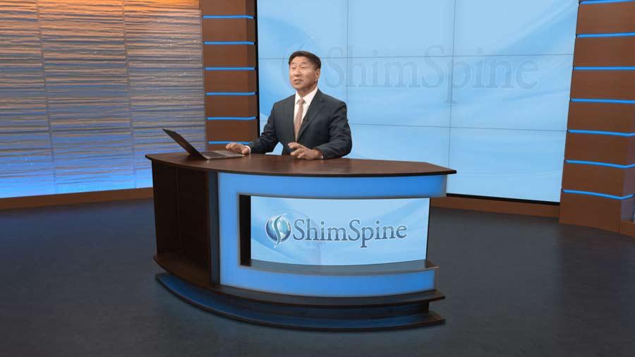 ShimSpine Studio