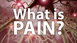 What Is Pain?